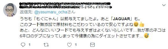 ジャガーツイッター体験談