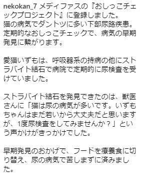 メディファスキャットフード評判クチコミ体験談